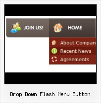 Navigation Menu Templates True False Flash Sample