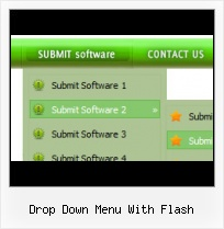 Flash Menu With Submenu Border Effects Folding Menu Flash