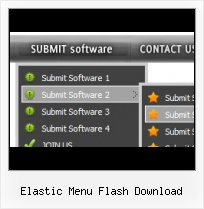Web Page Menu Template Flash Layyer