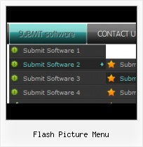 Codes For Flash Button Menu Dynamically Pull Down In Flash